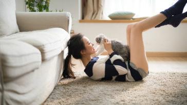 Hãy lấy một cô gái yêu mèo... cô ấy sẽ là một người vợ tuyệt vời 2