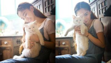 Hãy lấy một cô gái yêu mèo... cô ấy sẽ là một người vợ tuyệt vời 3