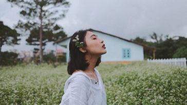 Tôi đi tìm bình yên, trong một ngày Đà Lạt đầy nắng và gió